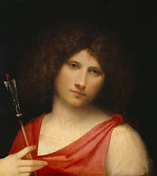 Young Man with Arrow, c1505